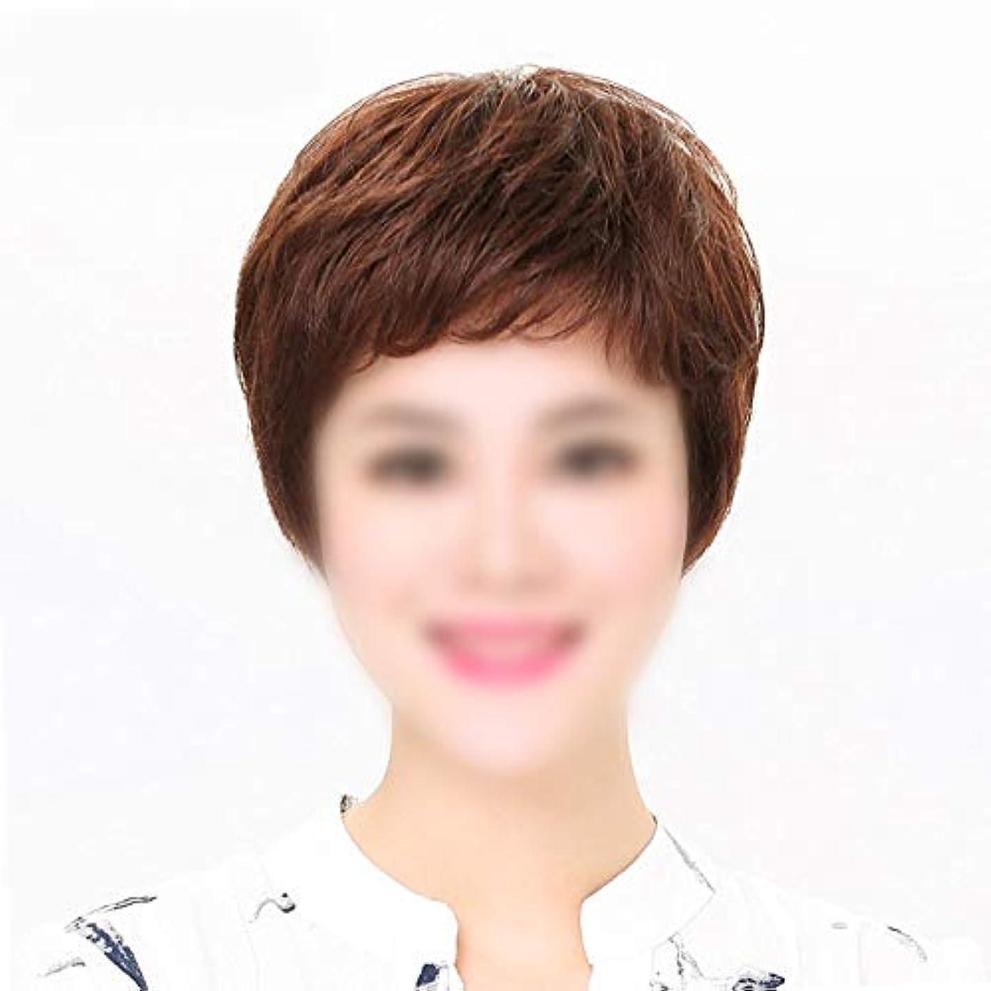 キャストウォーターフロントとティームYOUQIU ママデイリードレスウィッグかつら人間の自然なヘアエクステンションショートストレートヘアー (色 : Dark brown, サイズ : Mechanism)