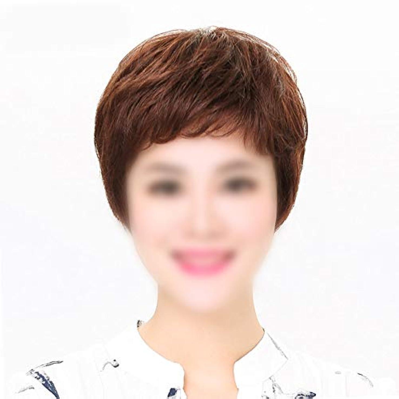 結婚式航空ユーモラスYOUQIU ママデイリードレスウィッグかつら人間の自然なヘアエクステンションショートストレートヘアー (色 : Dark brown, サイズ : Mechanism)