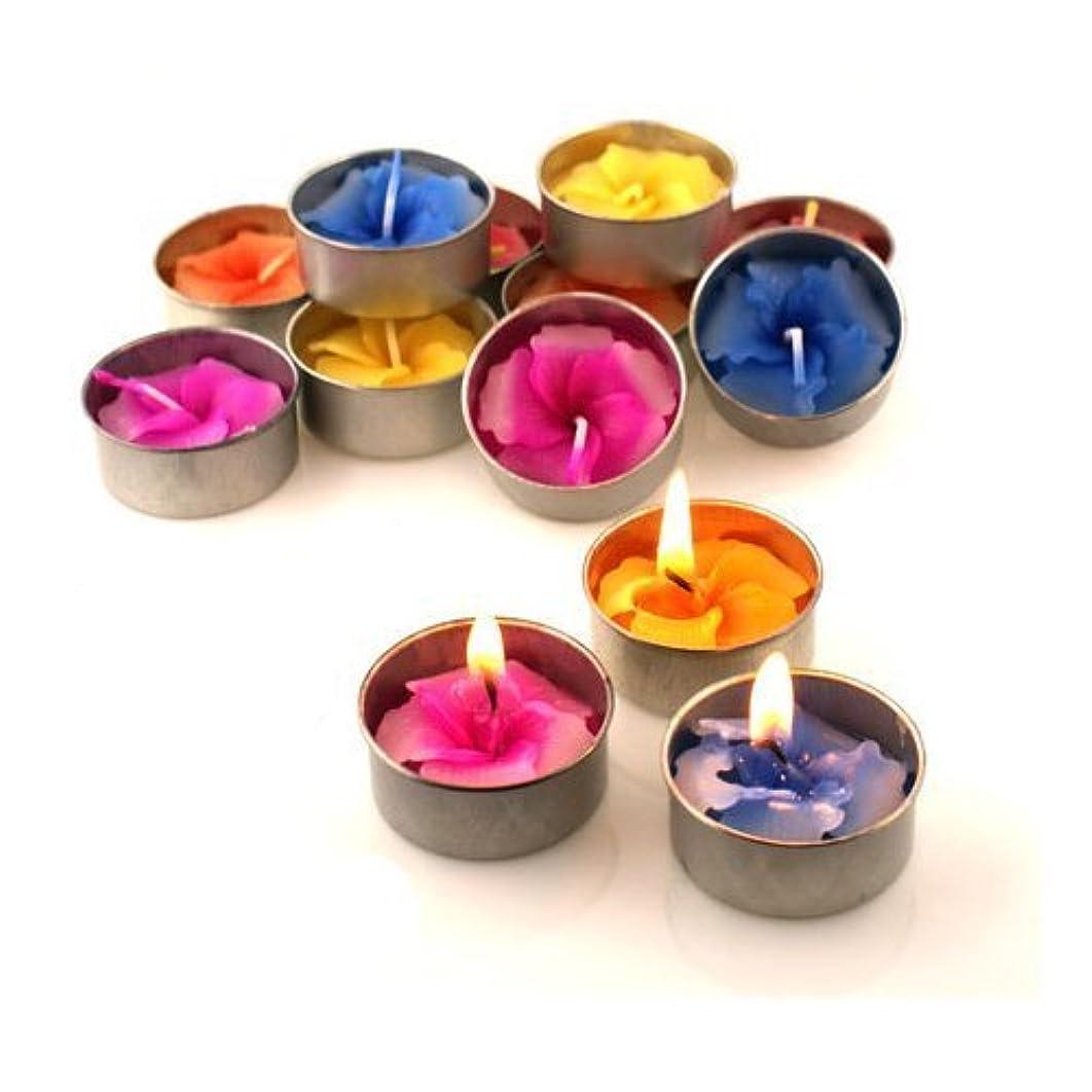 書店食品ぜいたくRelax Spa Shop @ Hibiscus Candle in Tea Lights , Floating Candles, Scented Tea Lights ,Aromatherapy Relax, Decorative Candles,(Hibiscus Candle in Tea Lights Pack of 10 Pcs.) by Relax Spa Shop
