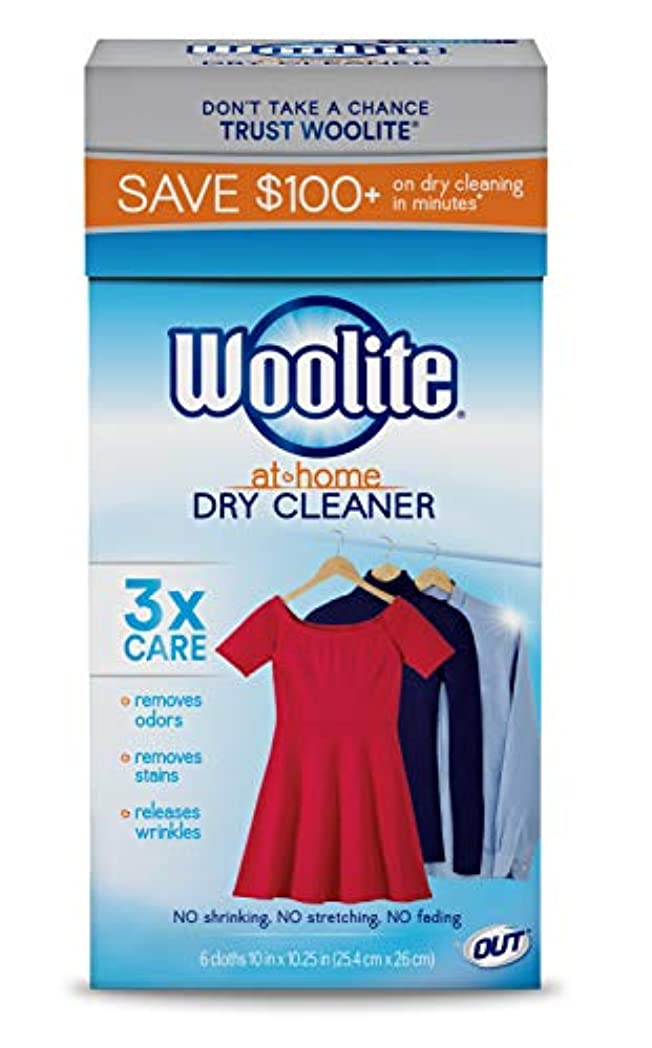 王位刺繍親(24 Cloths, Fresh Scent) - Woolite At Home Dry Cleaner, Fresh Scent, 4 Pack, 24 Cloths