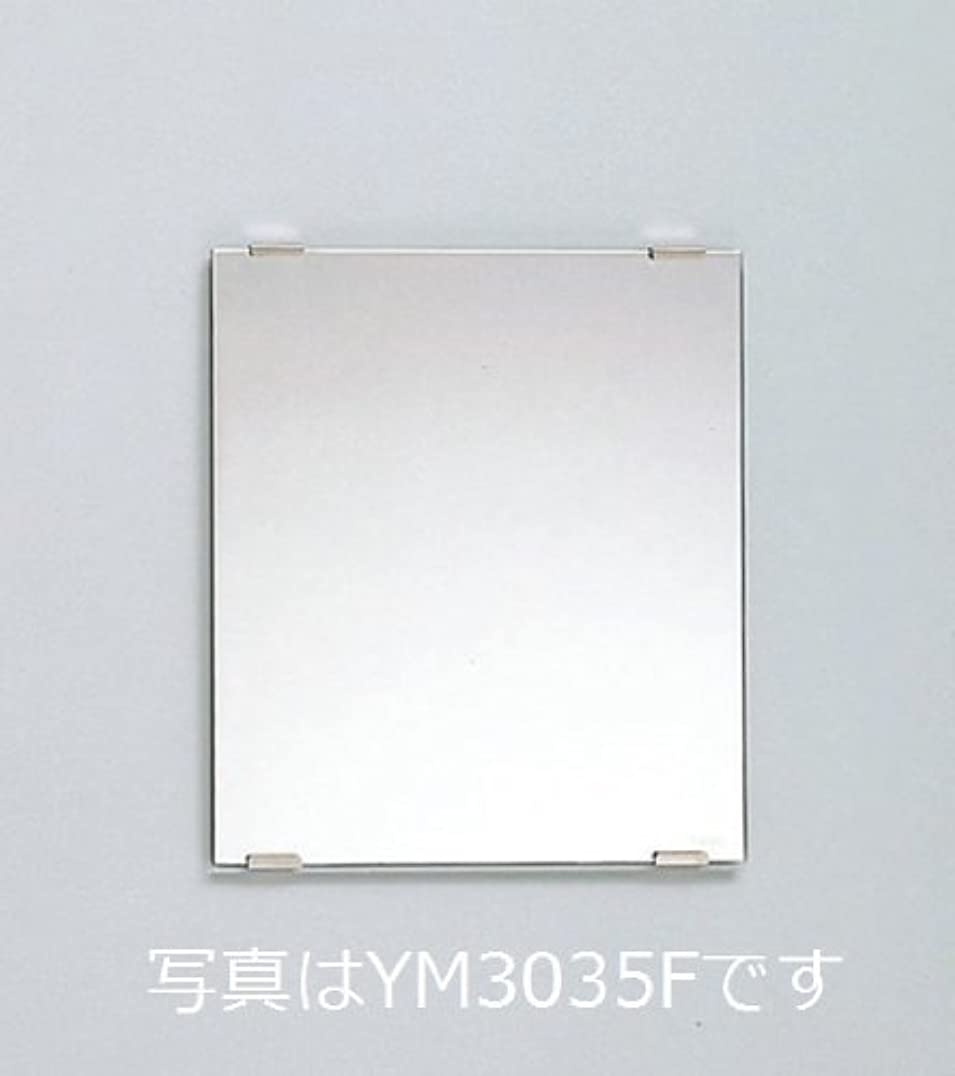 パネルアメリカ注文TOTO 耐食鏡 角形450x750 YM4575F