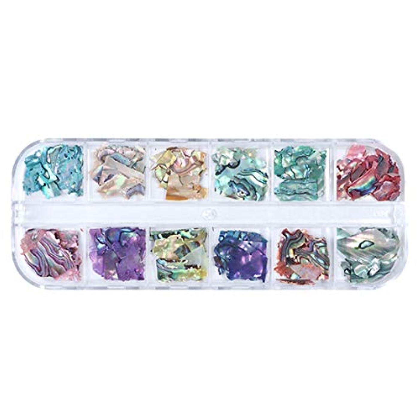 TOOGOO 3D不規則アワビ貝殻スライス ネイルスパンコール マーメイドフレークホログラフィックグリッターネイルアートの装飾 ポーランドのマニキュアBy