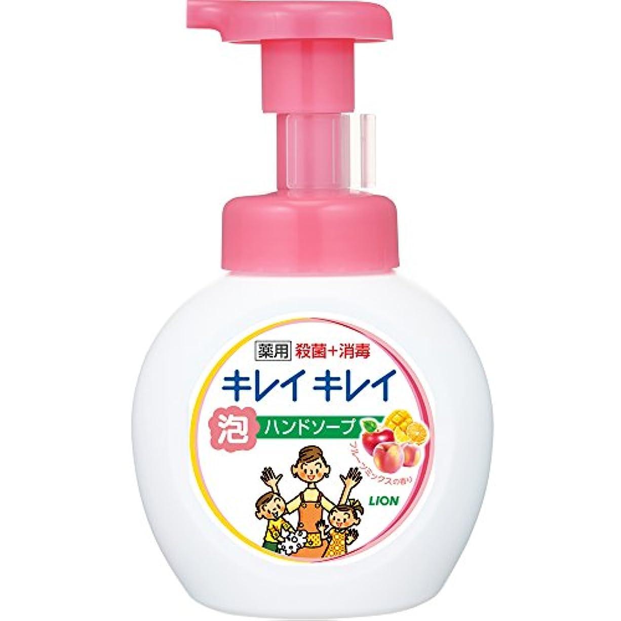 ヒゲクジラカリキュラム堤防キレイキレイ 薬用 泡ハンドソープ フルーツミックスの香り ポンプ 250ml(医薬部外品)