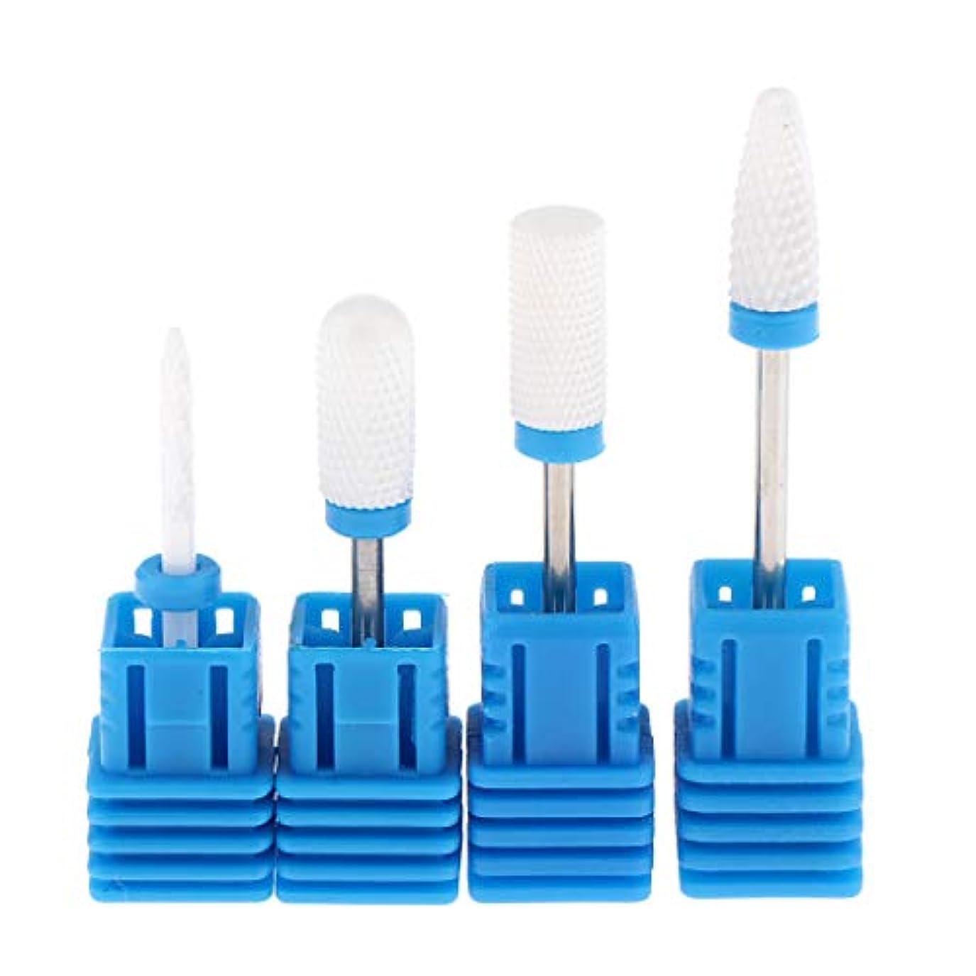 農奴今まで文化FLAMEER Nail Grinding Heads Tool Professional Nail Polishing Care Nail Art Care Nail Caring Tool