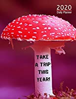 Personalised 2020 Diary Week To View Planner: Take A Trip This Year, A4 Planner For Travel And Life, Work, School, College  Organiser And Planner For The Year Ahead, School, Business, Office, Work, University