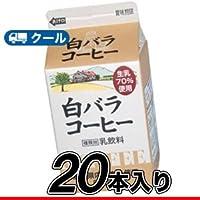 白バラ コーヒー/500ml×20本/クール便