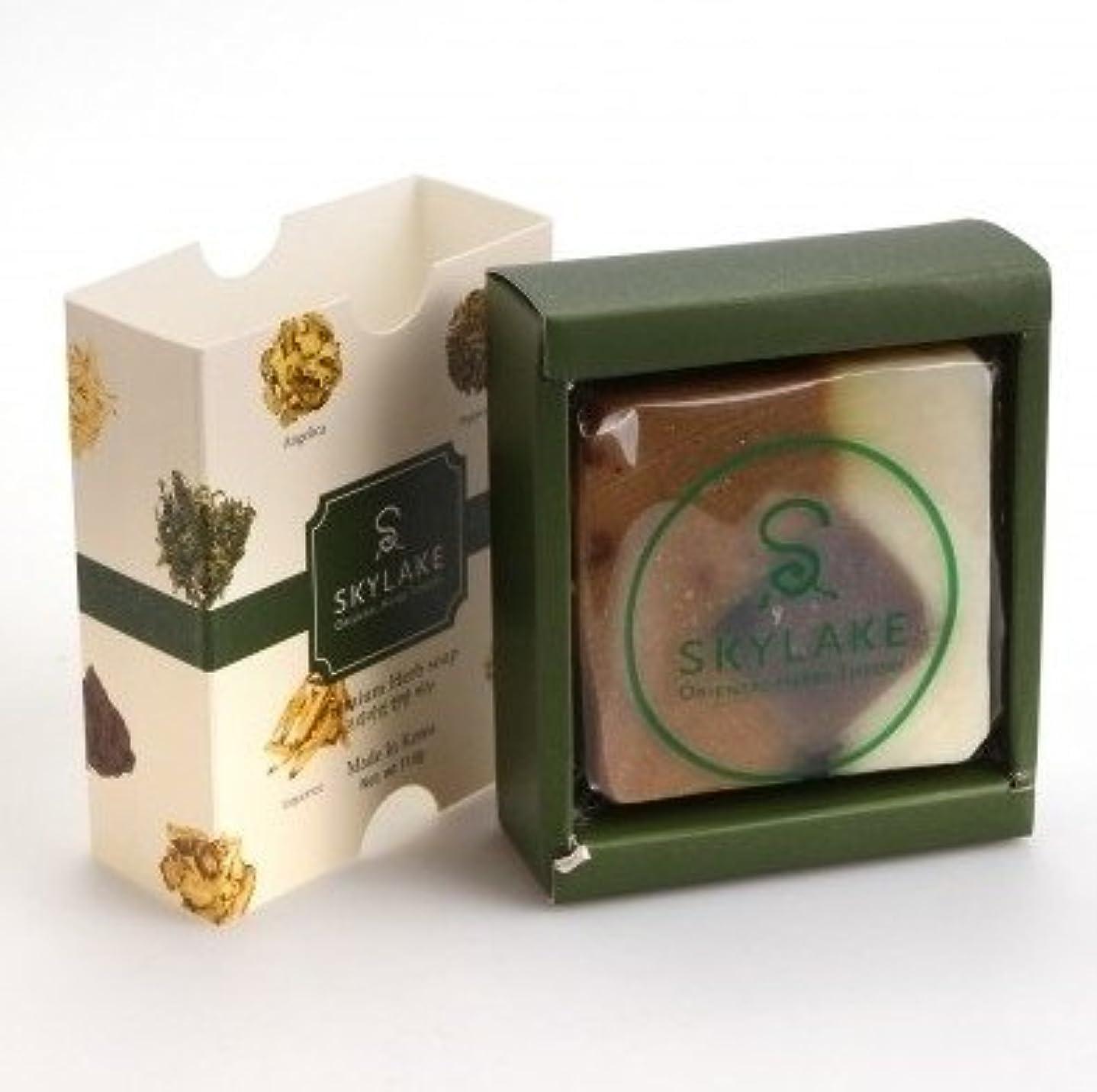 放棄されたワイプ共産主義ハヌルホス[Skylake] 漢方アロマ石鹸Oriental Herbs Theory Soap (プレミアム 手作り漢方)