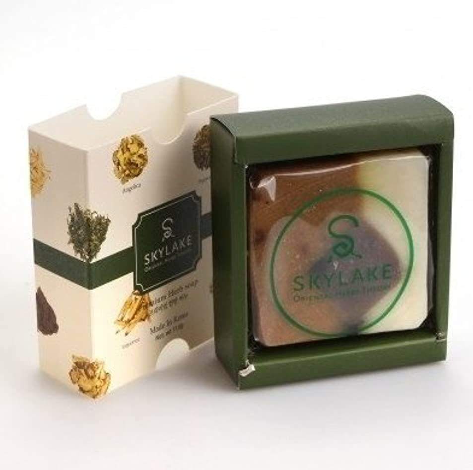 つぼみ堤防意味のある[1+1]ハヌルホス[Skylake] 漢方アロマ石鹸Oriental Herbs Theory Soap (プレミアム手作り漢方)