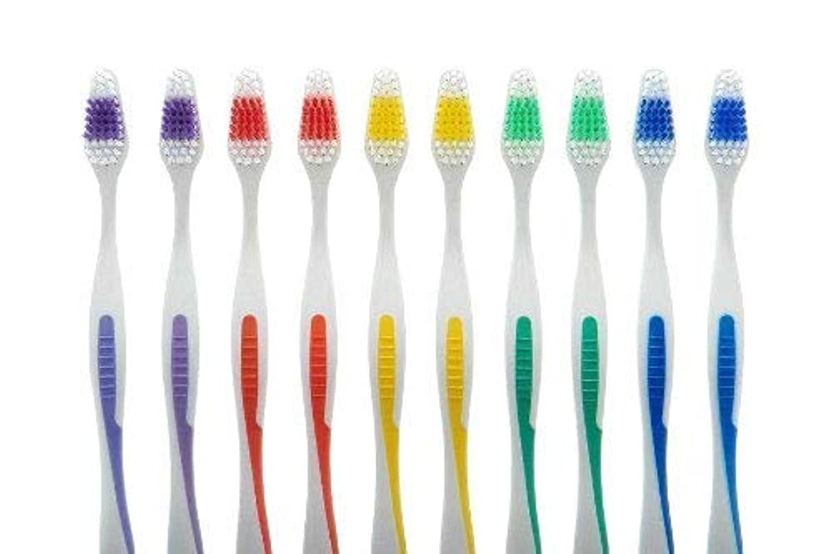 差別的シャックルクロス100 Toothbrush Standard Classic Medium Soft Individually wrapped by Online Best Service