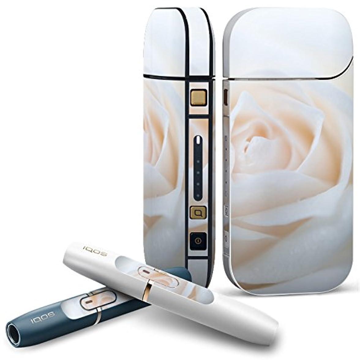 機動提唱する相関するIQOS 2.4 plus 専用スキンシール COMPLETE アイコス 全面セット サイド ボタン デコ フラワー 写真?風景 白 薔薇 写真 005080