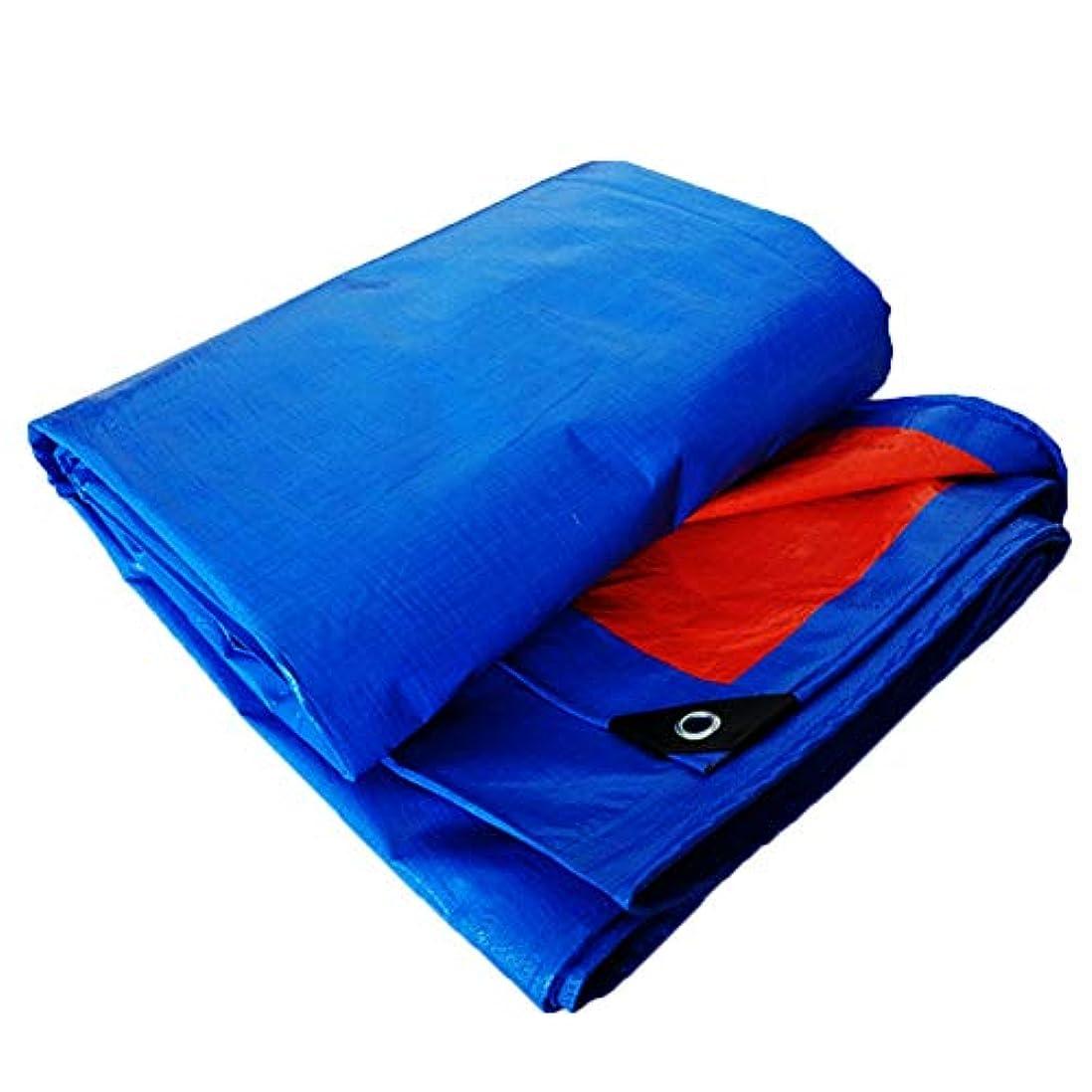 スリーブ乳製品変位キャンバスタパスリンリノリウム防水布バイザー布、180g / m2 ZHML (サイズ さいず : 2*2m)