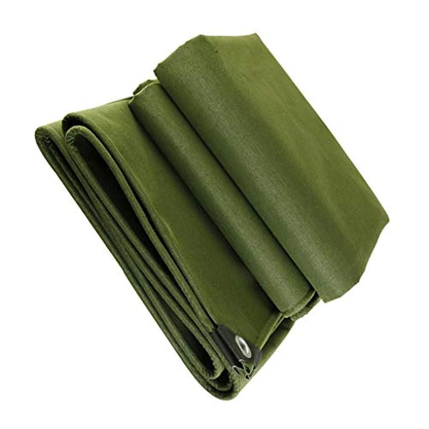 騒乱やりがいのある無条件オーニングカーペット、オーニング多目的ターポリン 耐候性、ポータブル屋外カーペットマット、カーレインUV (Size : 4mx5m)