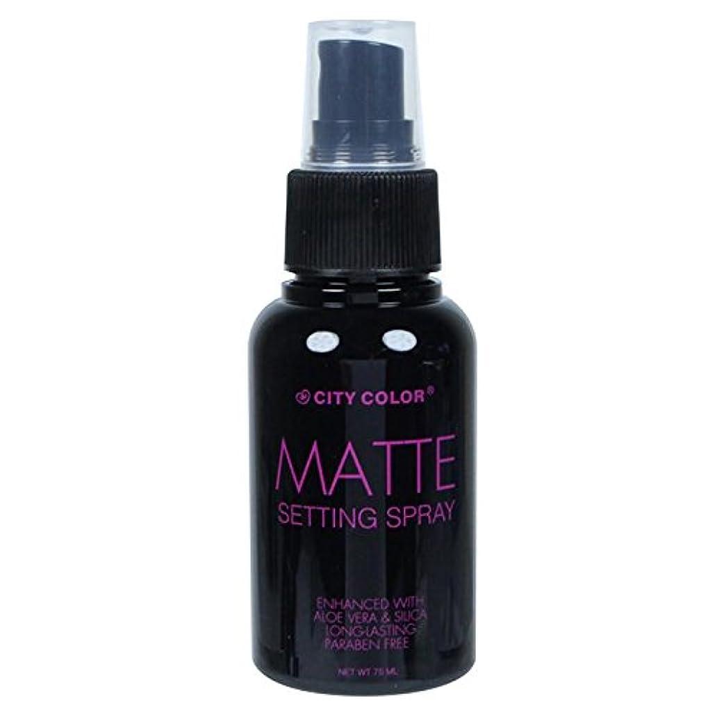 団結する雑多な十(6 Pack) CITY COLOR Matte Setting Spray (並行輸入品)