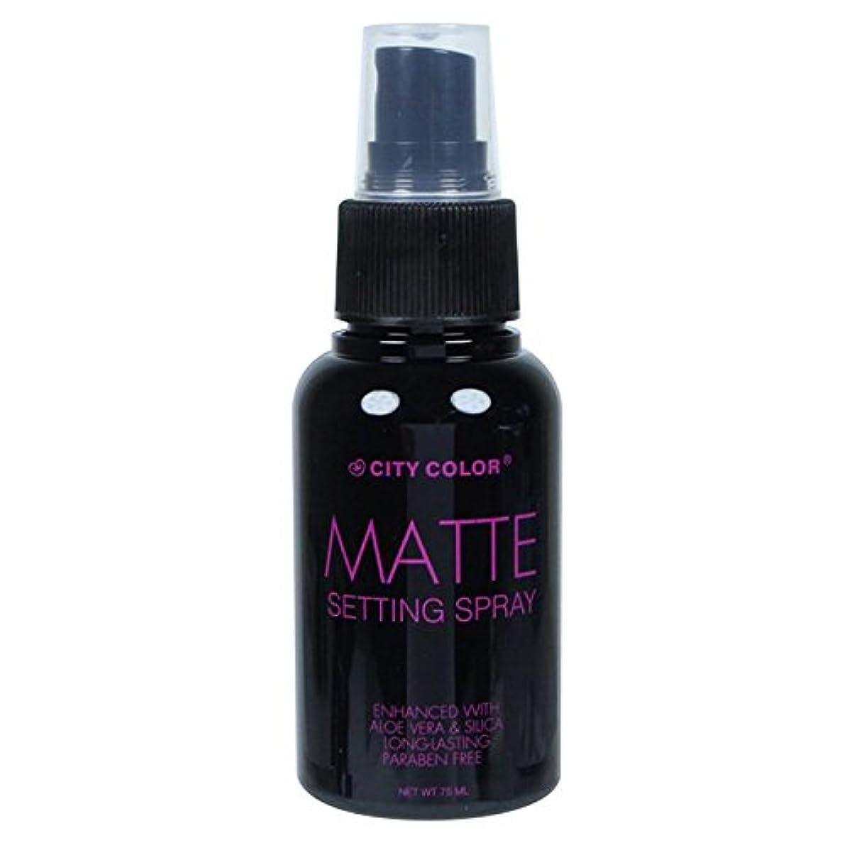 棚排泄する不適(6 Pack) CITY COLOR Matte Setting Spray (並行輸入品)