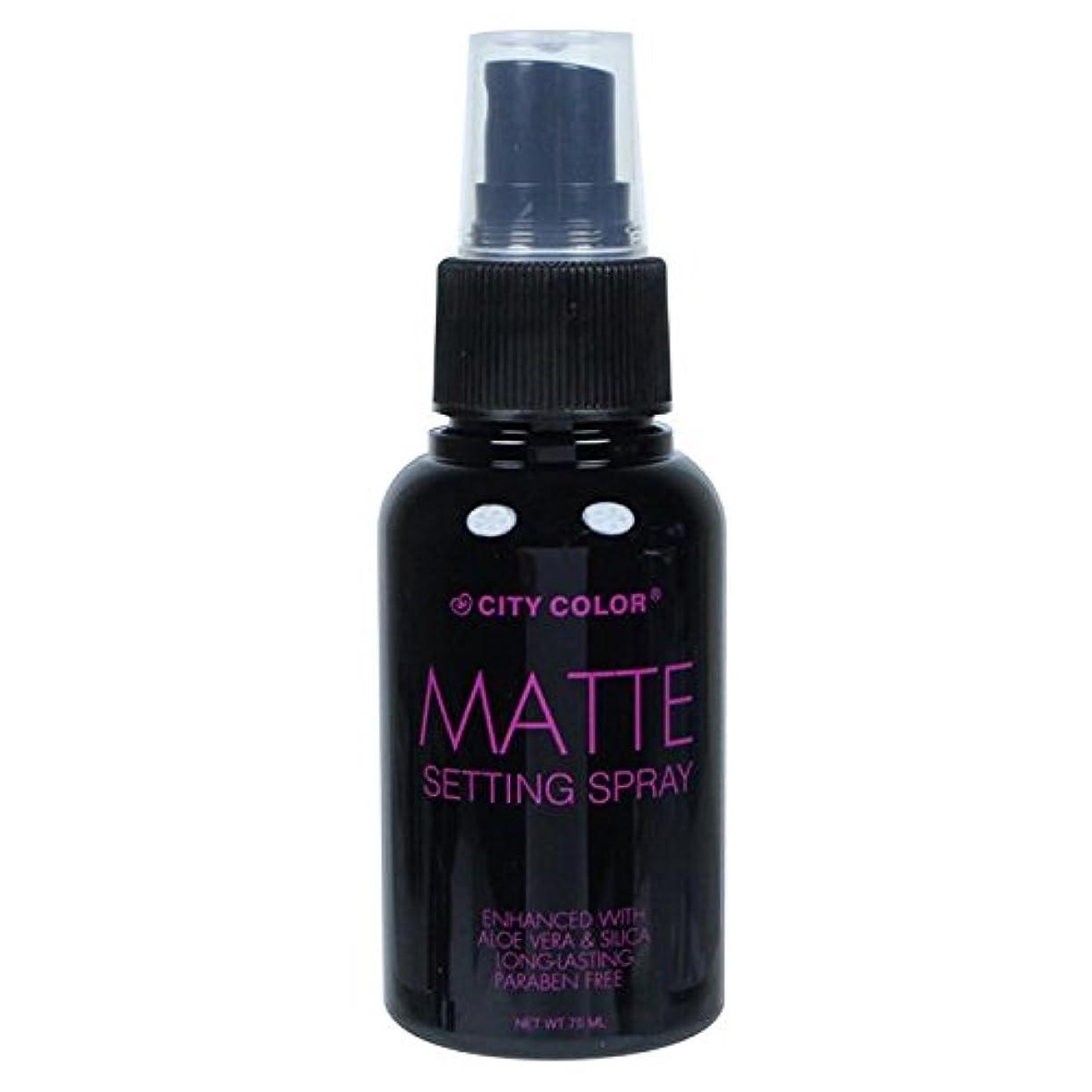 電気のインチどうやら(6 Pack) CITY COLOR Matte Setting Spray (並行輸入品)