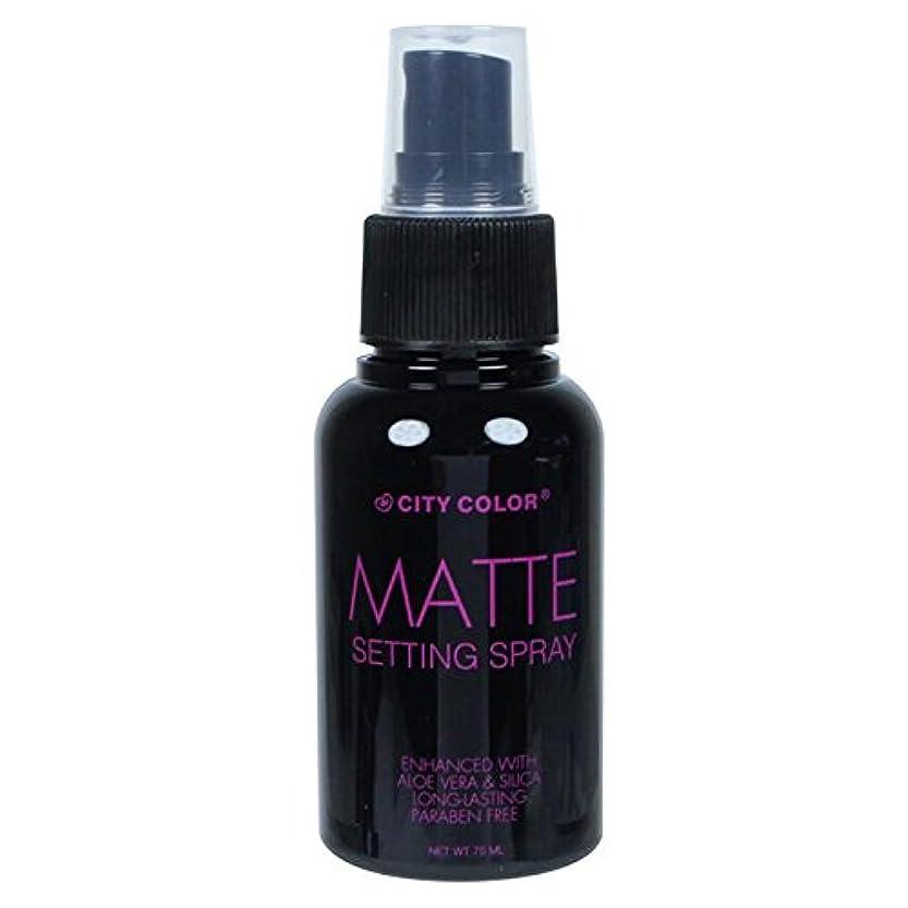 方法論急流カセット(6 Pack) CITY COLOR Matte Setting Spray (並行輸入品)