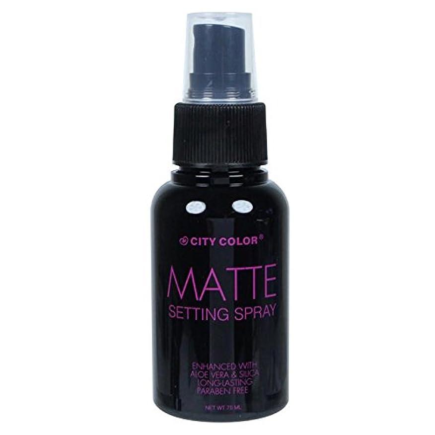 独創的デコレーションネスト(6 Pack) CITY COLOR Matte Setting Spray (並行輸入品)