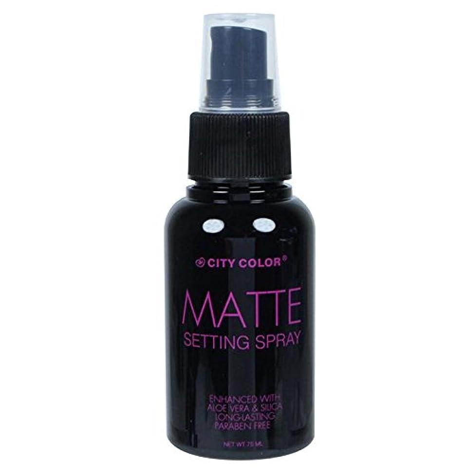 グリーンランドバングラデシュ厚くする(6 Pack) CITY COLOR Matte Setting Spray (並行輸入品)