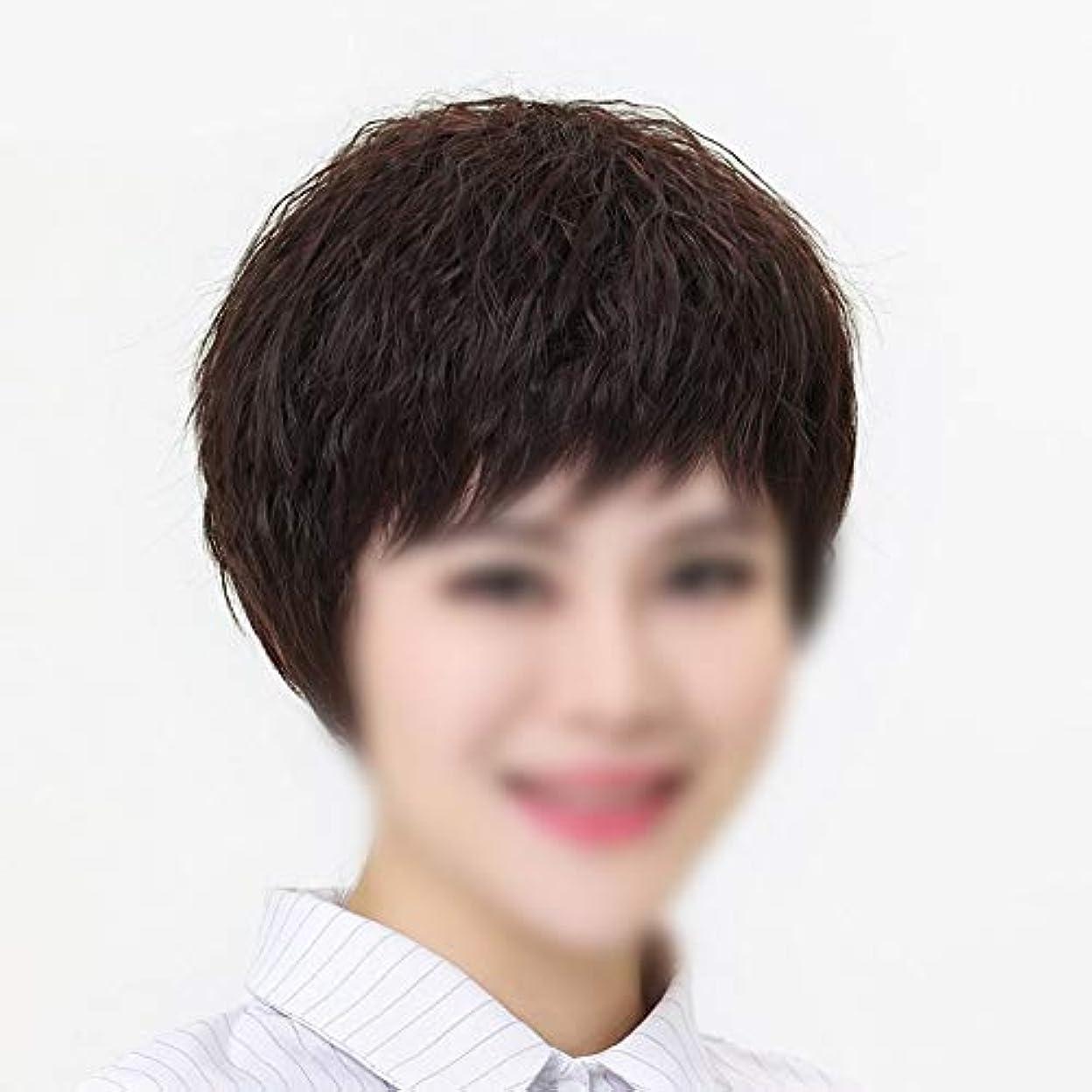 征服者完璧微弱YOUQIU 女性のかつらのためにボブショートストレートヘアナチュラルヘアエクステンションリアルタイム毛ウィッグ (色 : Dark brown, サイズ : Mechanism)