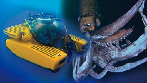 青島文化教材社 1/48 ディープシーエクスプローラーシリーズ No.1 潜水艇 トライトン プラモデルの詳細を見る