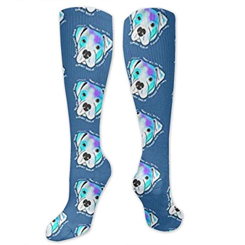 流用するスチュアート島ペイント靴下,ストッキング,野生のジョーカー,実際,秋の本質,冬必須,サマーウェア&RBXAA Fashion Blue Pitbull Socks Women's Winter Cotton Long Tube Socks Cotton...