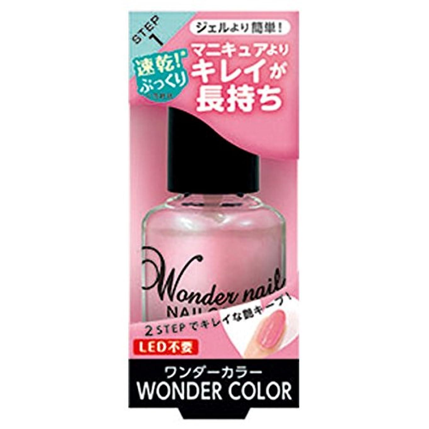 ブラジャー上ナビゲーションpa ワンダーネイル WN-05 (10ml)