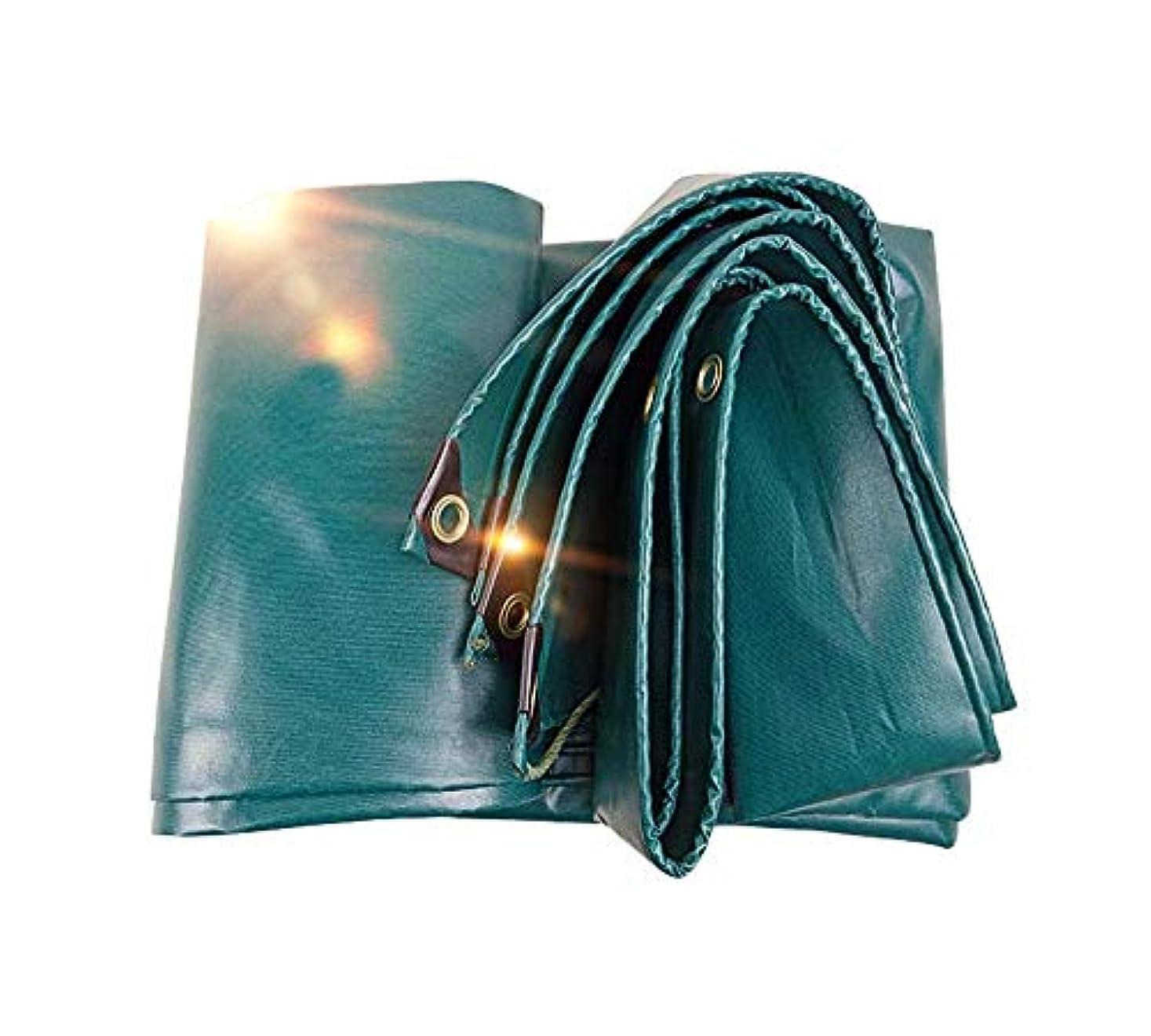 勤勉な代表するスーダン屋外防水穴あき防水シート、0.48 mm凍結防止断熱ターポリン、自動車用日焼け止めサンシェード、および防雨布、550 g/m 2