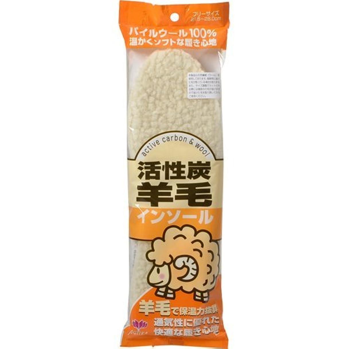 ムスタチオひどく受け入れたアクティカ 活性炭羊毛インソール フリーサイズ