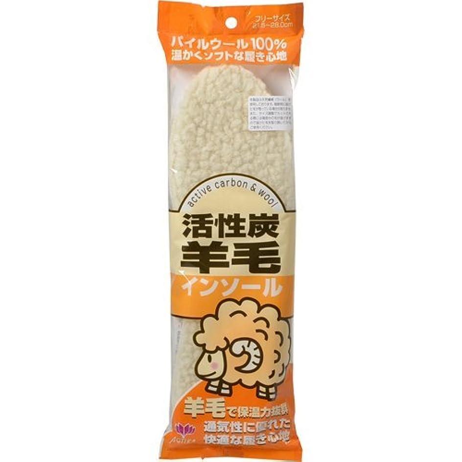 冷蔵する裏切り蓋アクティカ 活性炭羊毛インソール フリーサイズ