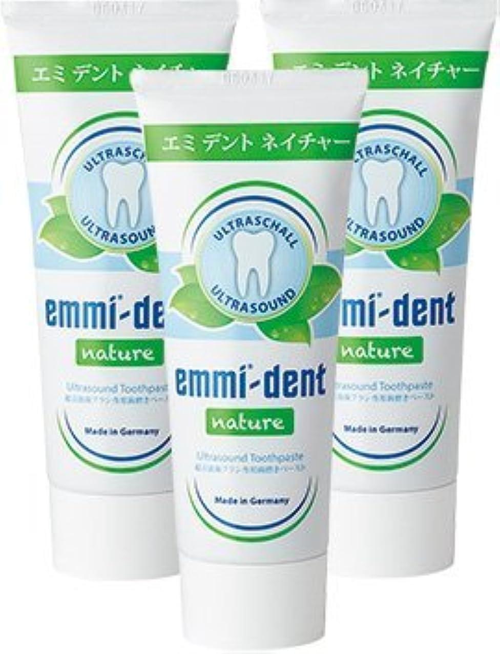 多くの危険がある状況日食本物エミデント 超音波歯ブラシ専用歯磨きペースト リフィル 75g × 3本