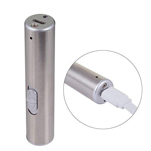ペンライト ハンディライト 懐中電灯 紫外線 ブラックライト UVライト 100ルーメン USB充電式 WOLFTEETH キーホルダー 白光紫光2モード 405601