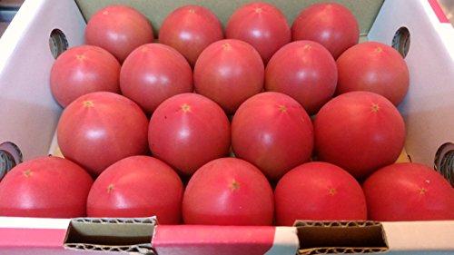 808青果店 静岡県 長野県産 とってもあま~い 高糖度 アメーラトマト 1箱約1kg 12玉前後