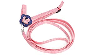 Harness Hauling Cable Rope Lizard Leash, Humanized Hand Grip Adjustable Hauling Rope, for Reptile