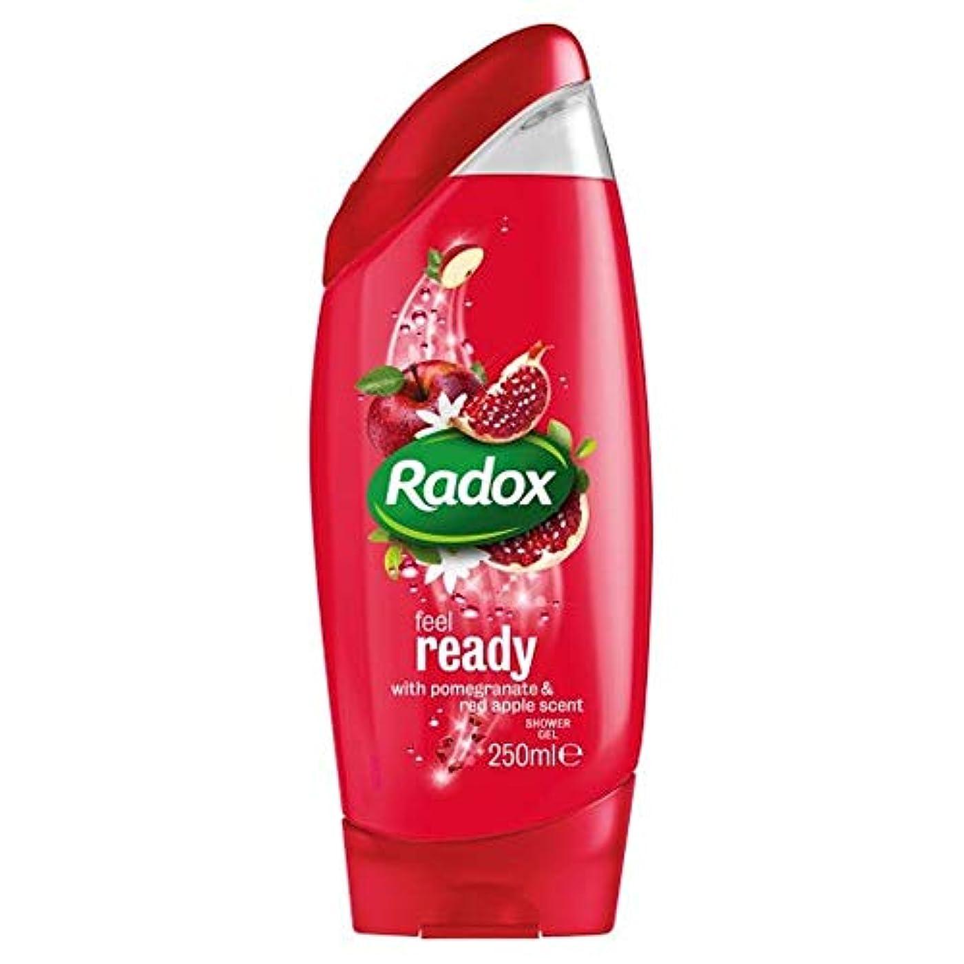 靄母音アノイ[Radox] Radoxは準備ができてシャワージェル250ミリリットルを感じます - Radox Feel Ready Shower Gel 250Ml [並行輸入品]