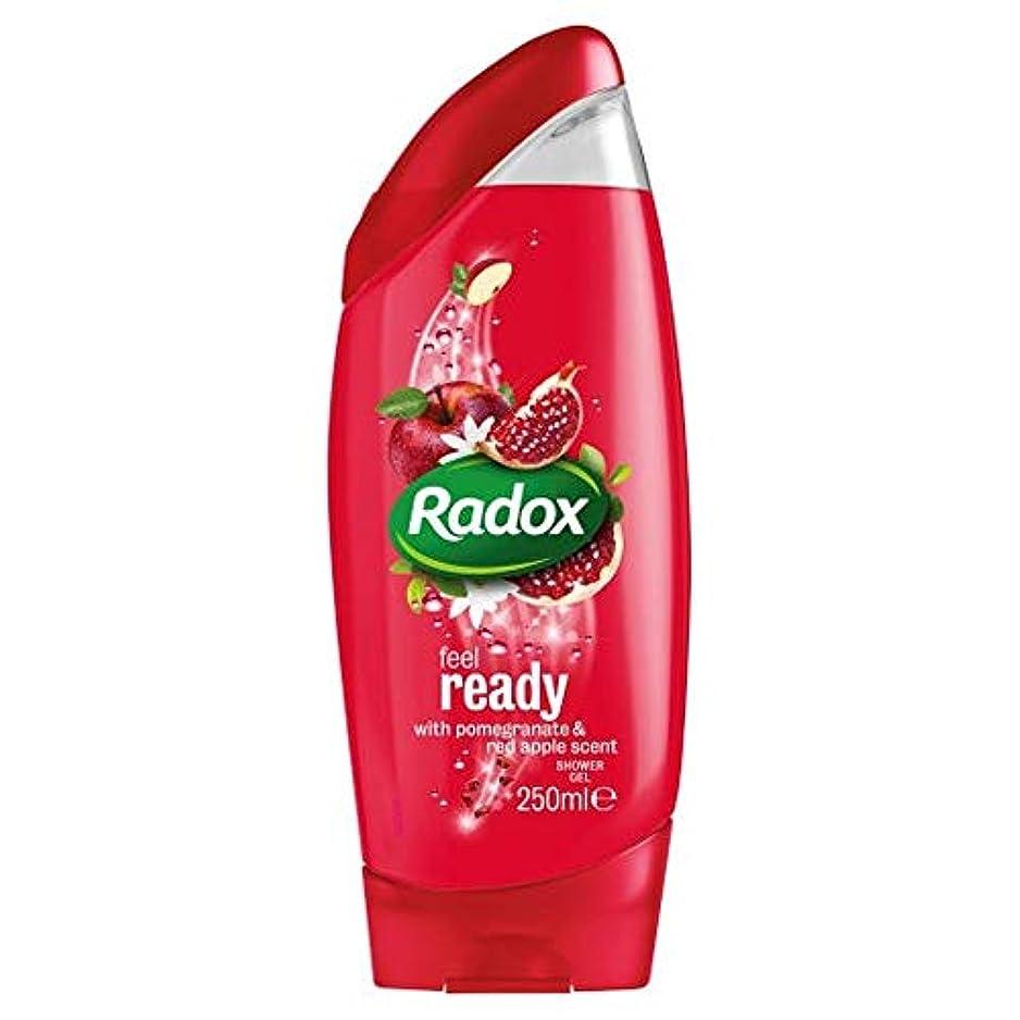 傑出した換気ドメイン[Radox] Radoxは準備ができてシャワージェル250ミリリットルを感じます - Radox Feel Ready Shower Gel 250Ml [並行輸入品]