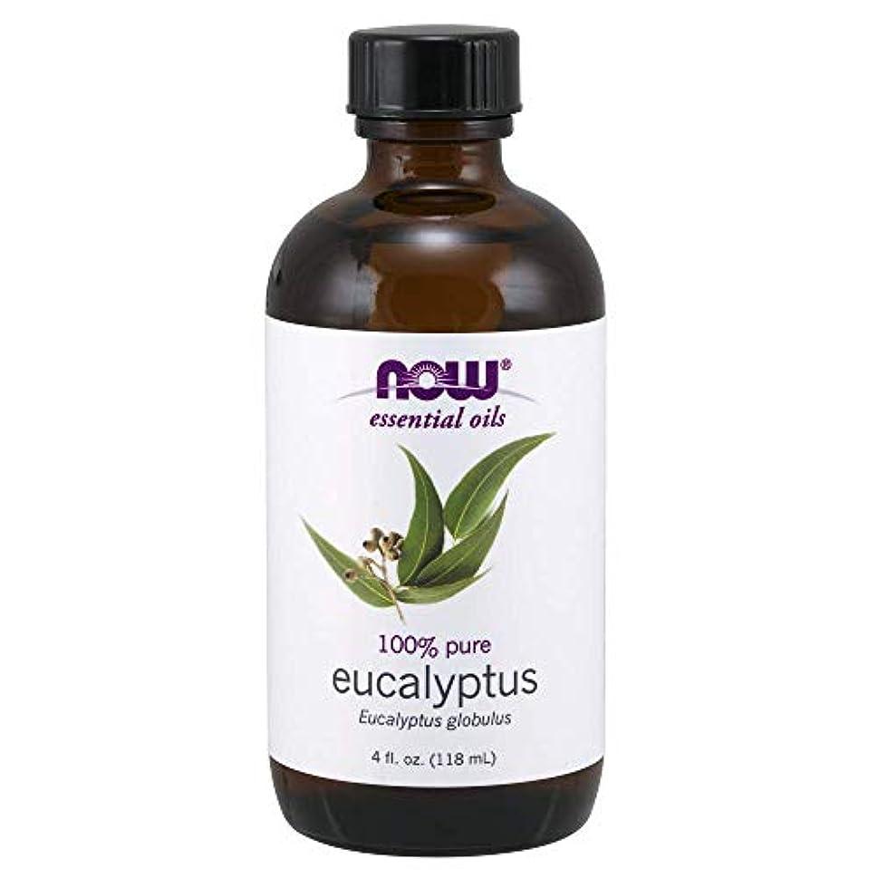 崖かんたん透過性Now - Eucalyptus Globulus Oil 100% Pure 4 oz (118 ml) [並行輸入品]