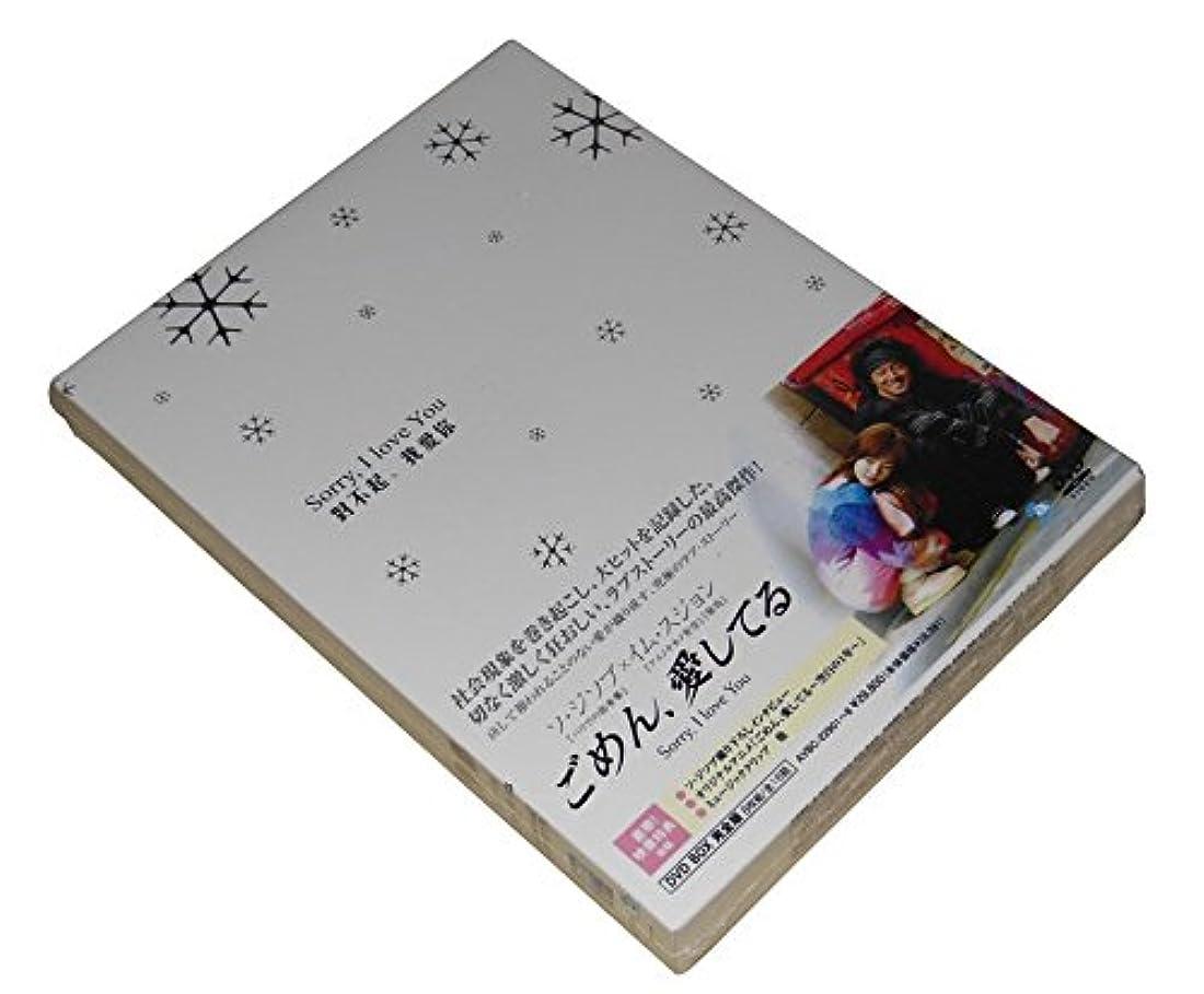 スリーブリーガンインテリアごめん、愛してる BOX 完 2006 主演: ソ?ジソブ
