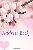 Address Book: Names Phone numbers & more Friends & Family  birthdays With names and addresses &  phone numbers and More  ; with beautiful designs & Glossy Cover & Nice design