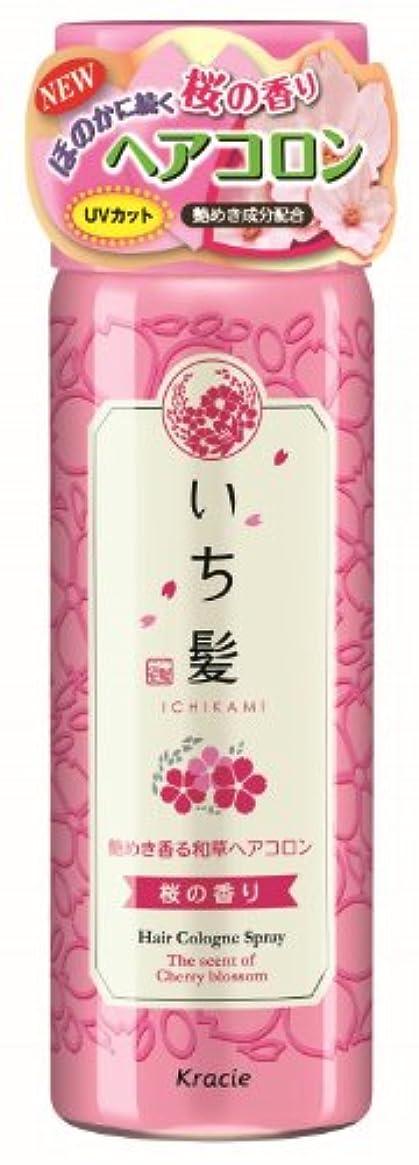 グラス気になるソロいち髪 艶めき香る和草ヘアコロン 桜の香り 80g