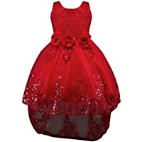 Weixinbuy Girls' Flower Lace Trailing Wedding Tulle Formal Dress