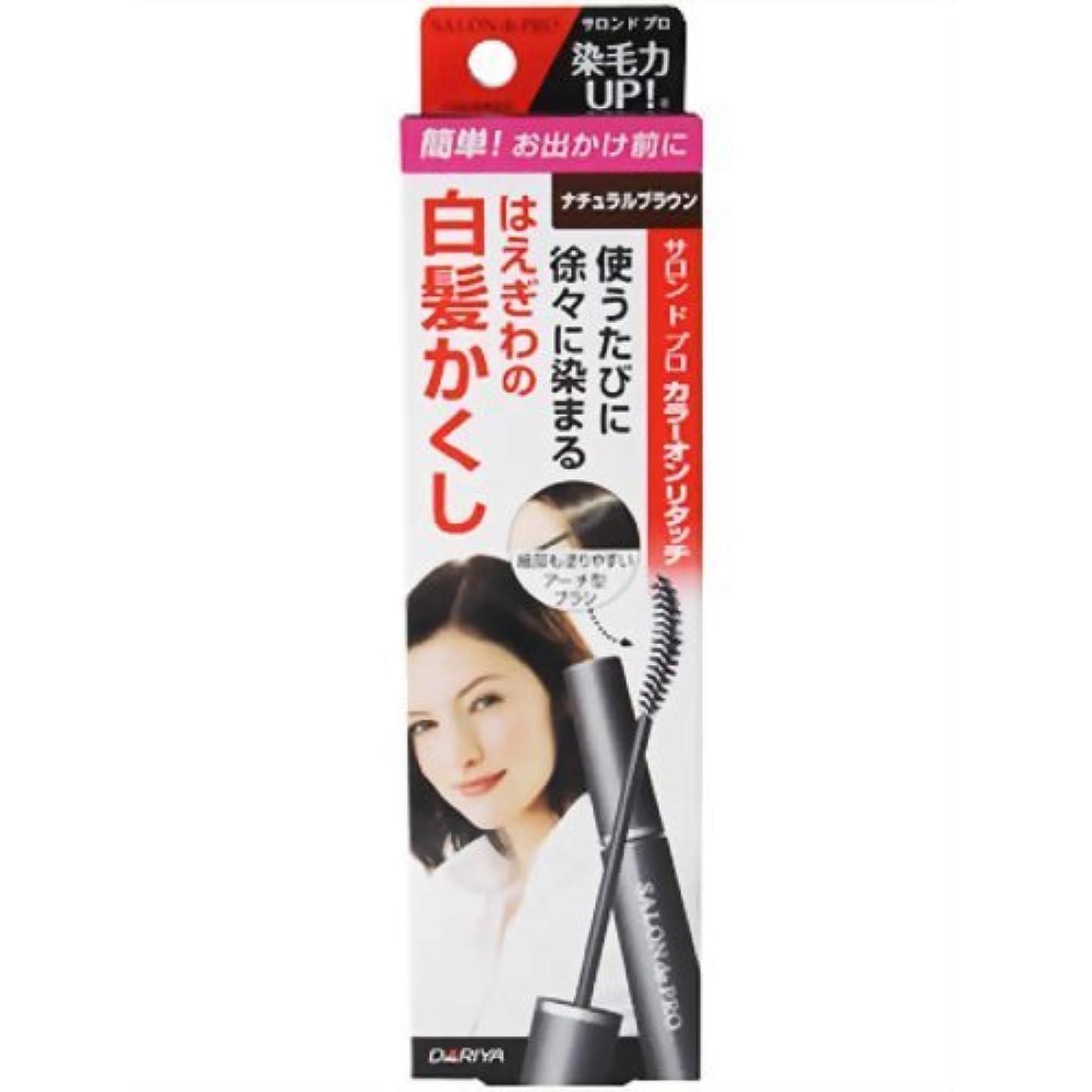一月リース虚栄心サロンドプロカラーオンリタッチ白髪かくし ナチュラルブラウン           15ML × 5個セット