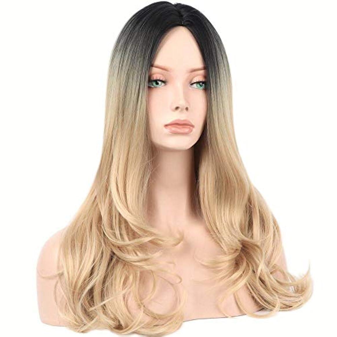 初期苦しむ素晴らしきWASAIO レディースロングストレートウィッグ人工毛オンブルブロンドロングカーリーヘアーコスプレウィッグ (色 : Blonde)