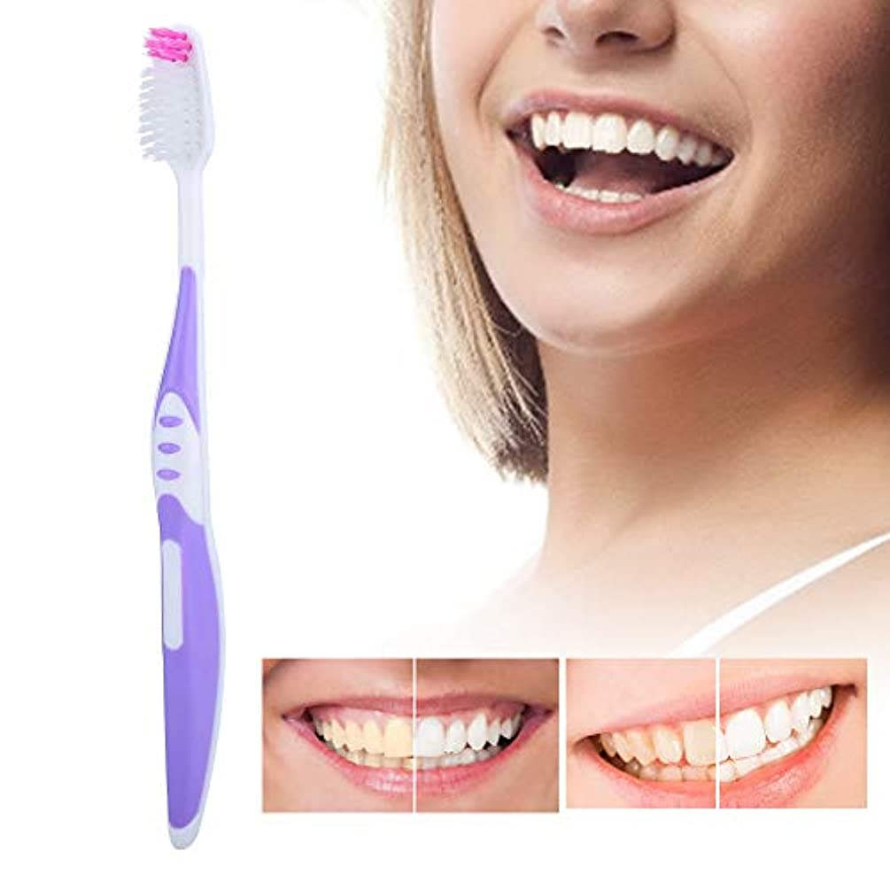 調停する支配するホバートソフトブラシ髪の歯ブラシ10個入りpp滑り止めハンドル歯のクレンジングブラシ用大人パープル