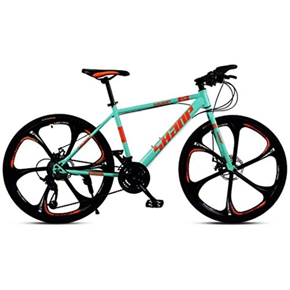 バドミントン外側教軽量21台のスピードマウンテンバイク自転車、24/26インチハードテイルマウンテンバイク、ダブルディスクブレーキ、グリーン6カッター (Color : 24-stage shift, Size : 24inches)
