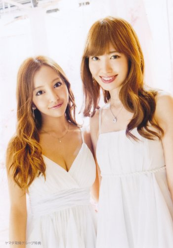 AKB48 公式生写真 恋するフォーチュンクッキー 店舗特典 ヤマダ電機 【板野友美 小嶋陽菜】