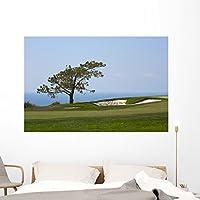 """からTorrey Pines Golf壁壁画by Wallmonkeys Peel and Stickグラフィックwm348103 60""""W x 40""""H - Jumbo FOT-8121046-60"""