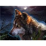 Diyの油絵子供のためのデジタル油絵大人初心者16x20インチ、夜の狼--クリスマスの装飾ホームインテリアギフト (フレーム)