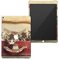igsticker iPad Air 10.5 inch インチ 対応 全面スキンシール apple アップル アイパッド 専用 2019 第3世代 A2123 A2152 A2153 A2154 シール フル タブレットケース ステッカー 保護シール 008717 アニマル 写真 猫 ネコ カバン 鞄
