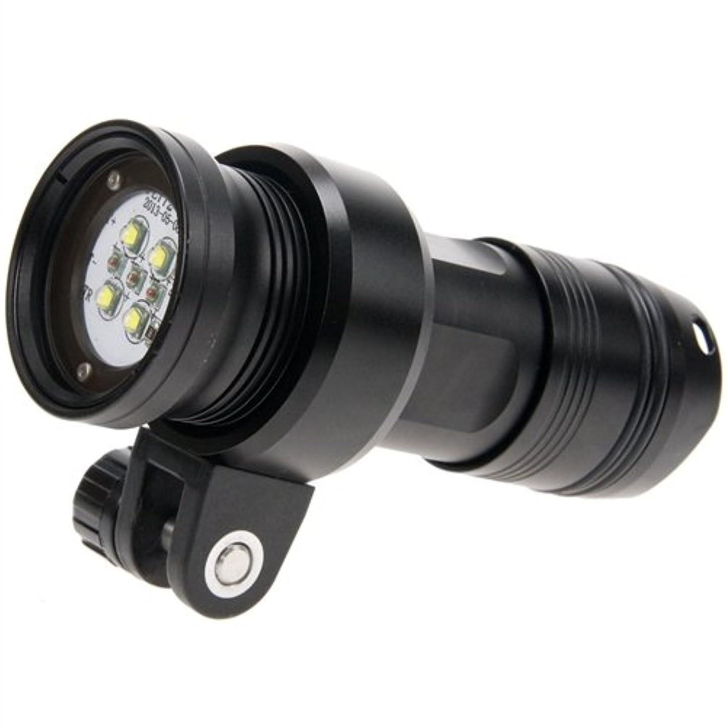幼児難しいエロチックi-Torch Fish-Lite V24 Video LED Light, 2400 Lumens by I-Torch