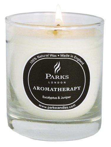 Parks(パークス) Aromatherapy フレグランスキャンドル ユーカリプタス&ジュニパー PKNW13
